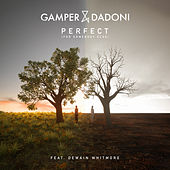 Perfect (For Somebody Else) [feat. Dewain Whitmore] by GAMPER & DADONI