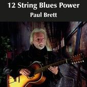 12 String Blues Power by Paul Brett