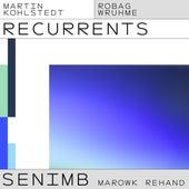 SENIMB (Robag Wruhme Marowk Rehand) by Martin Kohlstedt