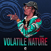 Volatile Nature von R3ckzet