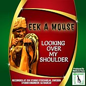 Looking Over My Shoulder by Eek-A-Mouse