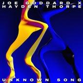 Unknown Song von Joe Goddard