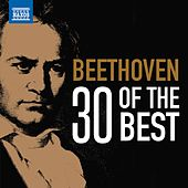 Beethoven: 30 of the Best de Various Artists