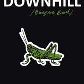 A Grasshopper's Lament by Downhill Bluegrass Band