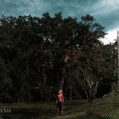 XXII (Caminho) von Banda Nomade