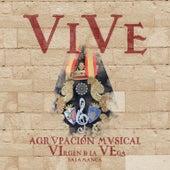 Vive by Agrupación Musical Virgen de la Vega (Salamanca)