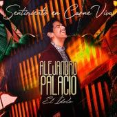 Sentimiento en Carne Viva de Alejandro Palacio