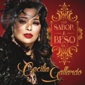 Con Sabor a Beso, Vol. 1 by Cecilia Gallardo