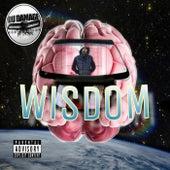 Wisdom by Du Damage
