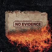 No Evidence by Nieman J