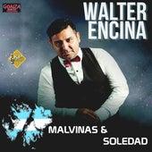 Malvinas y Soledad de Walter Encina