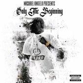 Only the Beginning de Michael Angelo II