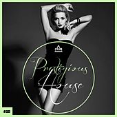 Prestigious House, Vol. 25 de Various Artists