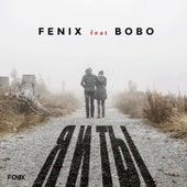 Я и ТЫ (feat. Bobo) von Dj Fenix