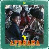 Afreaka by FKi 1st