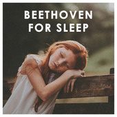 Beethoven For Sleep von Various Artists