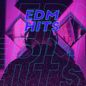 EDM Hits de Various Artists