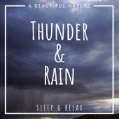 Thunder & Rain: Sleep & Relax von A Beautiful Nature
