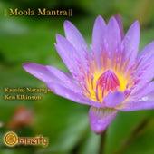 Moola Mantra by Ken Elkinson