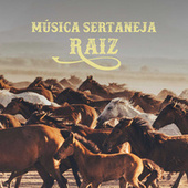 Música Sertaneja Raiz by Various Artists