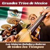 Grandes Tríos de México de Trío Los Panchos