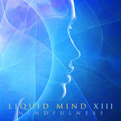 Liquid Mind XIII: Mindfulness de Liquid Mind
