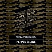 Pepper Snake/The Dap de The Cactus Channel