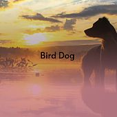 Bird Dog by Jill Corey, The Everly Brothers, Doris Day, The Solitaires
