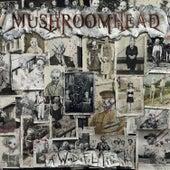 A Wonderful Life by Mushroomhead