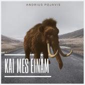 Kai Mes Einam by Andrius Pojavis