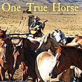 One True Horse by Michael Martin Murphey