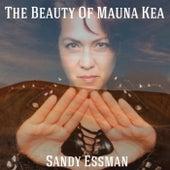 The Beauty of Mauna Kea by Sandy Essman