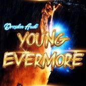 Young Evermore de Dresden Audi