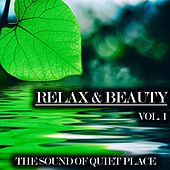 Relax & Beauty, Vol. 1 by Various Artists
