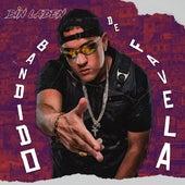 Bandido de Favela by Mc Bin Laden