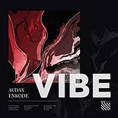 Vibe by AUDAX