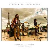 Place Du Trocadéro (Live) de Picanha de Chernobill