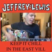 Keep It Chill in the East Vill von Jeffrey Lewis