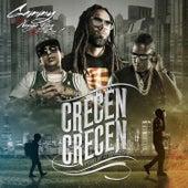 Crecen Crecen by Gammy