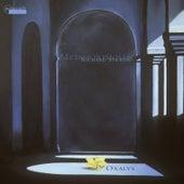 Strauss: Metamorphosen de Oxalys