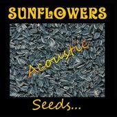 Seeds de The Sunflowers