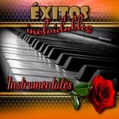 Exitos Inolvidables, Instrumentales von Jimmy Lozano y Su Grupo