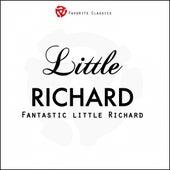 Fantastic Little Richard von Little Richard