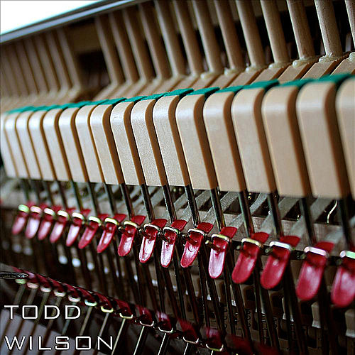 Piano, Vol. 1 by Todd Wilson
