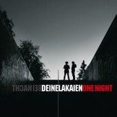 Bei Nacht / One Night von Deine Lakaien