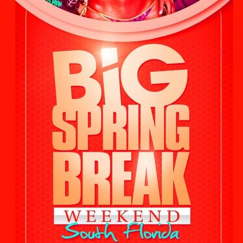 Big Springbreak Week End 2011 by Various Artists