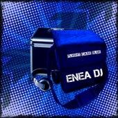 Flight Case Blue di Enea Dj