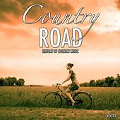 Country Road, Vol. 2 (History of Country Music) by Various Artists