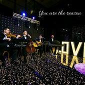 You Are the Reason by Samuel da Silva, Felipe Schramm, Guilherme Bruno Ramos