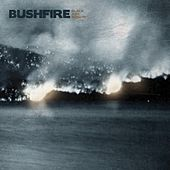 Black Ash Sunday by Bushfire